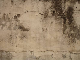 Textured cracked wall by sk3l-stock