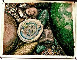 Abalone by ou8nrtist2
