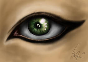 Eye-practice by Becso-dimension