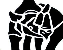 Rhino by nathanielwilliam