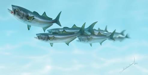 Blue Fish by gokhanproject