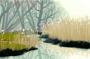 Fog Study by DruidTeeth