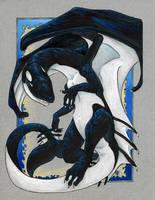 Orca Dragon by dhstein