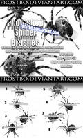 Photoshop Spider Brushes by FrostBo
