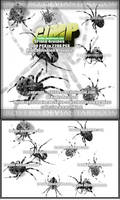 Gimp Spider Brushes by FrostBo