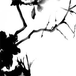 tree 01 by Hengki24