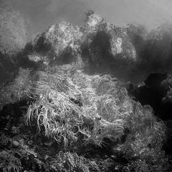 ocean 44 by Hengki24