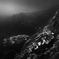 ocean 123 by Hengki24