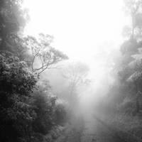 mist 102 by Hengki24