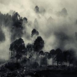 mist 126 by Hengki24