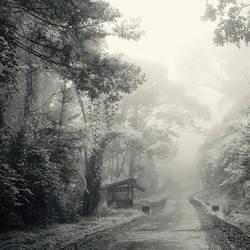 mist 131 by Hengki24