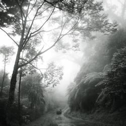 mist 135 by Hengki24