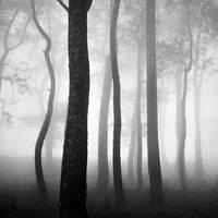 mist 158 by Hengki24