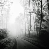 mist 168 by Hengki24