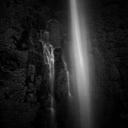 Liquid Garden by Hengki24