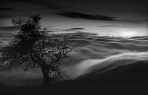 Jet Stream by Hengki24