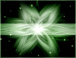 Flower in the Space by Segra