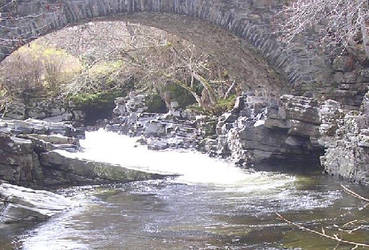 under the bridge by chikinNrice