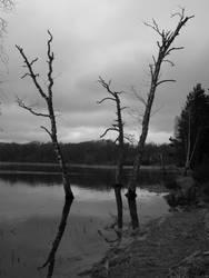 black n white lake photo by chikinNrice