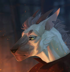 Headshot:. Sam by Remarin