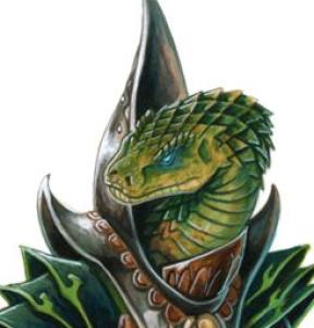 LizardZeWizard's Profile Picture
