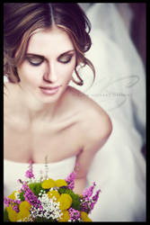 The Wedding Day by Nikola94