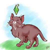 Sims 3 Needs Pets.. by catgirl320