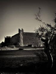 Khavidak Castle B and W by zohreh1991