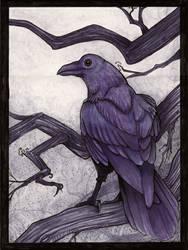 Raven by melyanna