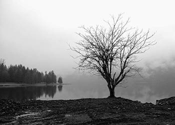 Alone by PaulMcKinnon