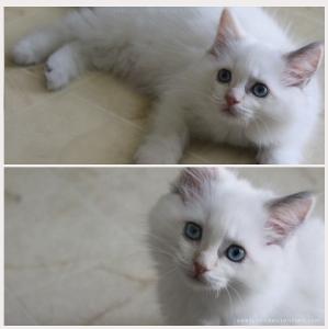 babylu01's Profile Picture