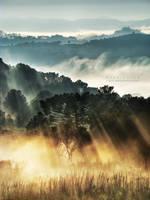 Morninglow by Miguel-Santos