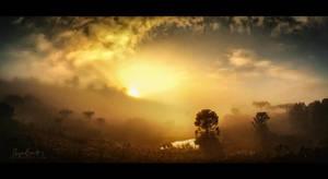 Araucaria sunrise by Miguel-Santos