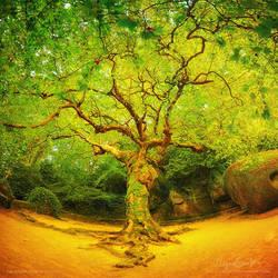Golgotha Tree by Miguel-Santos