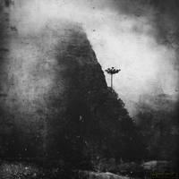 indomita by Miguel-Santos