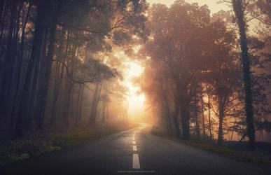 Into the Warmth by Miguel-Santos