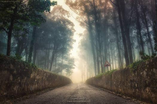 Into the Past by Miguel-Santos