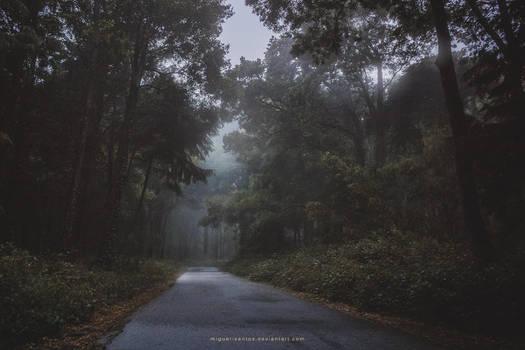 Into the Twilight by Miguel-Santos
