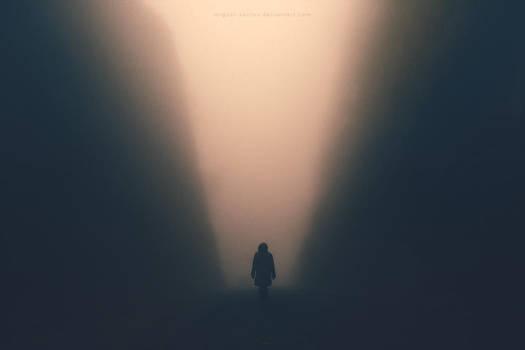 Shadow Domain by Miguel-Santos