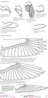 Bird Wing Tutorial -edit- by arourallis