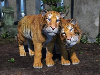 Tigerlove by tinkerfairy57