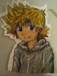 Roxas 2014 by awesomeandyisawesome