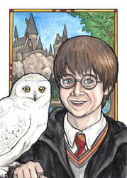 Harry and Hedwig by tlouey