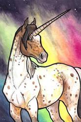 Rainbow Borealis by tlouey