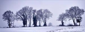 Cold by ValentinaKallias