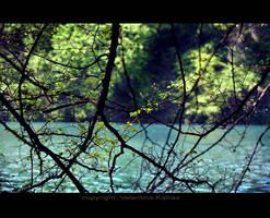 river by ValentinaKallias