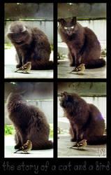 FOR FUN- Kitty is broken by ValentinaKallias