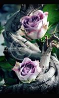 Two by ValentinaKallias