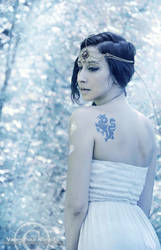Winter Dragon by ValentinaKallias