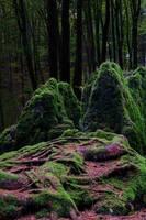 Druid's Grove by joachim-hagen